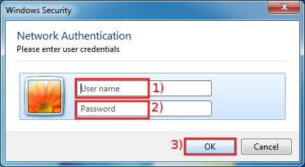 Insert your SISSA username and password, then click OK ...